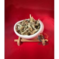 Biała herbata Ya Bao Yinzhen